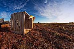 Wooden Crate On The Autumn Fields (k009034) Tags: 500px wooden copy space finland scandinavia tranquil scene agriculture autumn barn clouds countryside crate farm farming fields forest furrow nature no people old rural scenic sky tools field hay pasture crop teamcanon