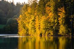 Autumn colors slowly coming (novak.mato91) Tags: green slovenia slovenija landscape nature nikon d7200 tamron70200 sigma1750 sunset sunrise geoslo