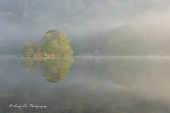 Echos Of Light (Andy Lea Photography) Tags: landscape mist trees reflections water lake light cumbria andy lea photography