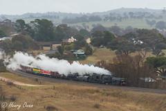 Gunning (Henry's Railway Gallery) Tags: 6029 ad60class garratt steamlocomotive steamtrain heritagetrain thnsw transportheritagensw passengertrain 6s70 gunning