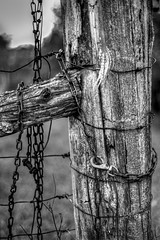 Weathered gate post (jaros 2(Ron)) Tags: fence gate weathered chain winter nw nikon ontario canada raw lightroom nikkor50mm18 nifftyfifty nikond800 nikonfx fullframenikon field country rural