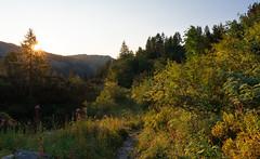 Triglav Lakes Valley (happy.apple) Tags: ukanc radovljica slovenia si triglavlakesvalley triglavskinarodnipark dolinatriglavskihjezer slovenija mountains summer poletje gore landscape morning jutro julijskealpe julianalps sunrise