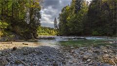 Die Ammer (Robbi Metz) Tags: deutschland germany bayern bavaria voralpen landscape forest trees river water ammer scheibum colors canoneos