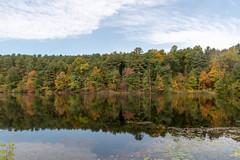 ashleyreservoir2018-139 (gtxjimmy) Tags: ashleyreservoir nikond7500 nikon d7500 newengland holyoke massachusetts autumn fall watersupply reflections reflection hdr