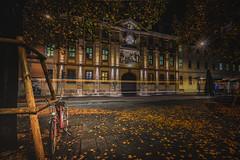 Pink Bicycle (M-Z-Photo) Tags: würzburg bayern deutschland de strase strasenbahn stadt lichter lichtspuren fahrrad langzeitbelichtung herbst laub baum nachtaufnahme nacht street