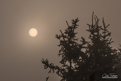 Sun through the fog (Anes Trebinjac) Tags: sun through fog sunce kroz maglu anes trebinjac nikon d7500 ilijaš sarajevo 18140