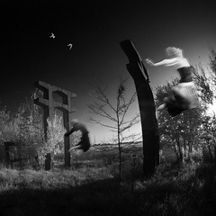 autumn landscape with birds (old&timer) Tags: background infrared composite surreal song4u oldtimer imagery digitalart laszlolocsei