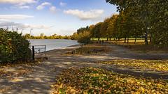 Autumn at Tarnfield park. (johnandco) Tags: yeadon tarns lakes dams westyorkshire boating yachting