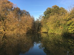 Caen Hill (Mellisapix) Tags: daysout nature countryside reflection water change trees autumn lock caen canal wiltshire