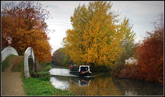 FANDANGO (Jason 87030) Tags: fandango grim adventure chips ausgae fishcake narrowboat rugby trees red yellow golden gown water cut crt oxfordcanal north scene uk england october fall season autumn autumnal color colour boat leisure sony ilce alpha local jasmine towpath bridge canal system midlands pump out leaf leaves foliage pylon electricity wires peace