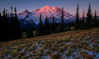 Mount Rainier consolation view