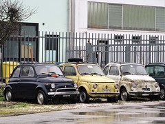 1970/71 Fiat 500 L (Alessio3373) Tags: oldcars classiccars rusty rusted rustycars corroded corrosion ruggine abandoned abandonedcars autoabbandonate unused unloved neglected forgotten forgottencars scrap scrapped junkyard graveyard fiat fiat500l targhenere blackplates