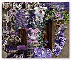 Alles Lila... (Körnchen59) Tags: lila purple farbe color lavendel dekoration geschäft shop pienza toskana italien italy körnchen59 elke körner sony6000