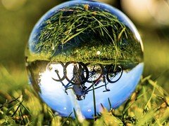 Bikes Bring You Places That Cars Never See (CJD imagery) Tags: grass macro canonefs18135mmf3556isstm canoneos80d bokeh mountainbikes autumn lensball nature essex stansteadmountfitchet england gb greatbritain uk unitedkingdom