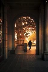 autumn light (BAD PIXELS) Tags: poznań morning travel autumn poland old town