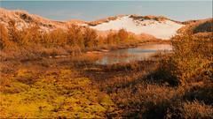 Pond in the dunes of Amrum (Ostseetroll) Tags: deu deutschland dünen geo:lat=5462526636 geo:lon=837853787 geotagged schleswigholstein teich amrum pond dunes insel nordsee island olympus em5markii northsea