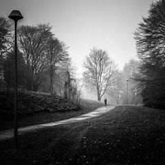 Point de non-retour (gaëlFineArt) Tags: bnw blackandwhite monochrome winter hiver alone seul noiretblanc fog brume