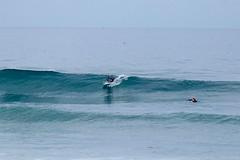 IMG_6366 (palbritton) Tags: surf surfing surfer singlefin longboard longboardsurfing surfcontest