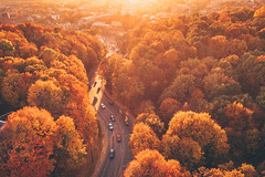 Road | Kaunas aerial #288/365 [Explored] (A. Aleksandravičius) Tags: autumn city road street kaunas europe parodos kalnas traffic cars sun sunset colors travel l1d20c hasselblad aerial lietuva lithuania dronas 2018 djieurope drone aerialphotography dji mavic pro djiglobal 2 mavic2 mavic2pro djimavic2pro mavicpro2 birdseye 365days 3652018 365 project365 288365 explore explored