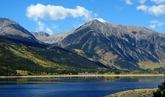 Colorado Gold Rush (Patricia Henschen) Tags: topoftherockies scenicbyway twinlakes reservoir lake glacial colorado mountain mountains sawatch range lakecounty sanisabelnationalforest reflection aspen leafpeeping fallcolor fall clouds nationalforest sanisabel usda forestservice recreationarea