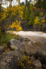 On the Border 20181011-DSC00606-2 (Rocks and Waters) Tags: batis225 bluff cliff grandportage minnesota pigeonriver stateparks yellow zeiss a7r2 batis fall fallcolors movingwater qwater rapds rocks sony trees