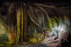 Varadero, Cueva de Ambrosio (Sean Sweeney, UK) Tags: nikon dslr d750 varadero cuba caribbean island iberostar hotel view travel photography photo beach sea cave caves cuevadeambrosio cueva ambrosio low light lowlight rock rocks