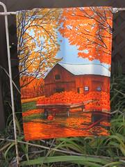 Autumn flag (creed_400) Tags: belmont west michigan autumn fall flag