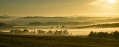 (Wöwwesch) Tags: fog sunrise landscape hills colors golden misty foggy sunrays morning walk autumn cold lonely pastures