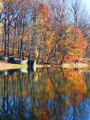 Sunken Wall (Stanley Zimny (Thank You for 33 Million views)) Tags: autumn fall 4 four seasons lake trees stormking art center reflection wall sunk orange