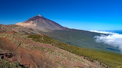 Clouds, Forrest and Teide / Nubes, Bosqaue y Teide (López Pablo) Tags: forrest tree pine lava volcano mountain teide national park cloud white sky blue green tenerife canary island spain nikon d7200 nature panorama