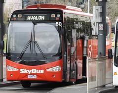 6848AO Skybus (damoN475photos) Tags: skybus 50 6848ao geelong avalon 2018 man18280 kinglong6126au