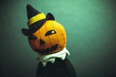 Let's Begin (3rd-Rate Photography) Tags: pumpkin jackolantern october halloween hydeandeekboutique plush decorations decoration canon 50mm 5dmarkiii daytona florida 3rdratephotography earlware 365