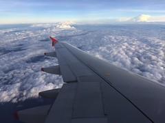 Tapete de nuvens! (alipiojunior) Tags: fly ferias vacation aviancabrasil avianca wings airplane aviao clouds nuvens sky ceu