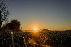 Sunset ☀️ (GE.86) Tags: sunset sunlight sun sonnenaufgang nikkor18105 nikond5300 landscape landschaft lanscapephotograpie