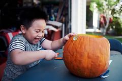 PP18 (• E •) Tags: pumpkinpatch2018 kid captureone fujifilmxpro2 fuji xpro2