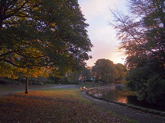 Sunrise in Harold Park (Mel_is_Moving) Tags: bradford epl6 olympus pen sky trees clouds outside outdoor tree park sunrise westyorkshire uk