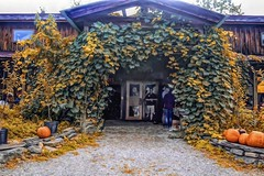 Fall At The Farm-HSS! (Happy Autumnal Equinox!!!) Tags: sliderssunday indiancreekfarm entrance firstdayofautumn porch vines pumpkins