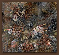 This world is but a canvas to our imagination. (Henry David Thoreau) (boeckli) Tags: hx9v 41363 photoborder ddg deepdreamgenerator plants plant pflanzen pflanze outdoor textures texturen texture textur bunt farbig farbenfroh colourful colorful colours colors colour grevillea flower flowers henrydavidthoreau