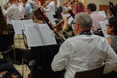 _DSC6106 (erengun3) Tags: jp morgan symphony orchestra rehearsal jpmorgan beethovens 9th eastlondon london londra orkestra raffaello morales citygateway ezgigunuc ezgidalaslan ezgi gunuc violin