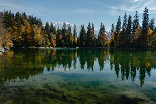 Le Lac Vert en automne