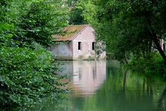 Au bord de la Canche (hervétherry) Tags: france hautsdefrance pasdecalais montreuilsurmer canon eos 7d efs 18200 canche rivière reflet reflection reflexion maison abandonné arbre verdure