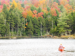 Iron Lake (patchais) Tags: ferris lake wild forest jockeybush iron adirondackmountains adk hamilton county canoe