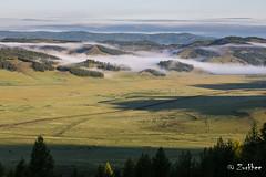Morning of Mongolia (Zurkhee) Tags: mongolianlandscape landscape morning sunrise northernmongolia trees horese nomadiclifeofmongolia creek fog forest