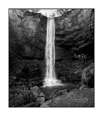 Belmore Falls in Black and White (sugarbellaleah) Tags: nature beauty waterfall southernhighlands hike journey bushwalk lush oasis swimminghole fresh cliffs wet ferns flora amazing rock belmorefalls pool outdoor adventure travel tourism location scenic scenery pretty fun recreation leisure wildesmeadow