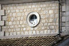 IMG_1235 (missionari.verbiti) Tags: amiciverbiti verbiti turismo sicilia palermo monreale segesta erice selinunte agrigento valledeitempli villadelcasale acicastello siracusa noto etna taormina linguaglossa enoteca catania montecassino