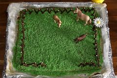 paddock cake (Siggital) Tags: paddock cake pferdekoppel kuchen foodporn food yummy children birthday kindergeburtstag