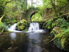 (Adrián Nieto Rodríguez) Tags: stream river flowing water waterfall creek pond cascade lake footbridge flow green forest trees rocks long exposure bridge travel galicia