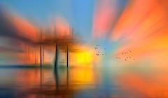 Solitude-365 (Wim Koopman) Tags: digital art colorful abstract birds flight flying reflection radial