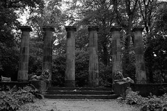 P52 Week 40 | Photo Walk (Steph*Powell) Tags: harlowcarr rhs garden harrogate yorkshire nikond5100