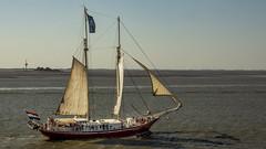 Day 3 Bremerhaven Germany_091 (Anthony Britton) Tags: canonesom5 18150mlens cruise england germany norway faroeislands iceland scotland ireland tallships ports seascape sea